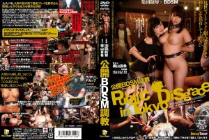 PDD 003 300x202 - [PDD-003] ぶちこみ○子ちゃん  その他メーカー(DVD) その他辱め  other humiliation Prenet corporation
