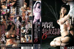 CN 454 300x202 - [CN-454] 噴乳牝奴隷6    【VHS】 おばさん  Other SM 中野D児 SM Nakano D child