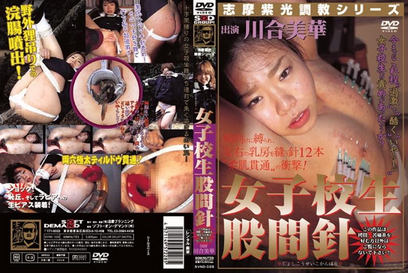 SVND 028 - [SVND-028] 女子校生股間針(じょしこうせいこかんばり)  Shima planning   Torture/Piercing その他女子校生 志摩プランニング