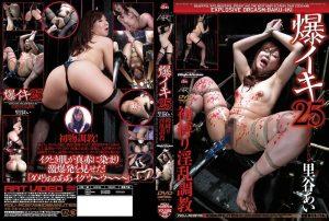 ADV R0573 300x202 - [ADV-R0573] 爆イキ  25 ボンデージ SM 調教 108分 Torture Orgasm Explosion Satotani Ai Art Video