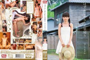 [SNIS-013] はずかしめられた里帰り ほしのあすか Risky Mosaic Hoshino Asuka Facials 野外 ザック荒井