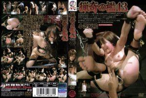 ADV R0381 300x202 - [ADV-R0381] Ogasawara Saki 猟奇の檻 43 2008/09/19 アートビデオ Restraints