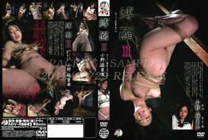 ADV R0642 300x202 - [ADV-R0642] Ono Maria Tied Drown III Art Video Training
